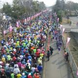 ハーフマラソンスタート